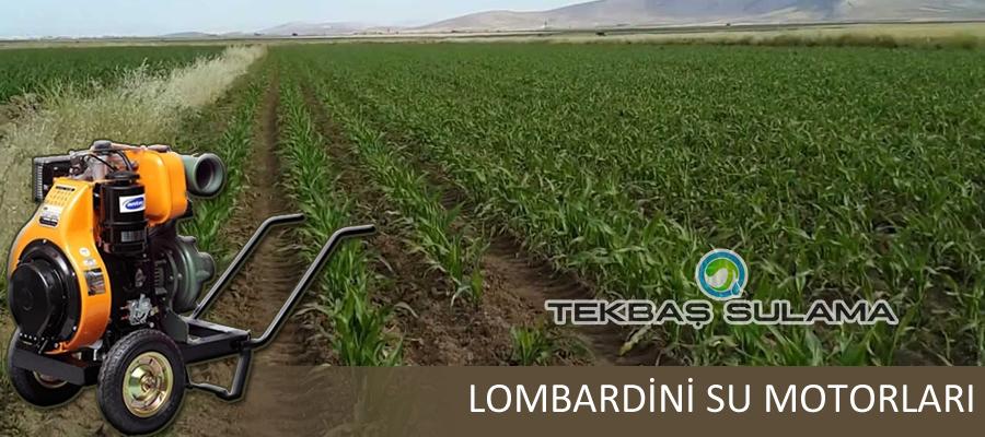 Lombardini Su Motorları